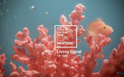 Living Coral, Color Pantone del año 2019